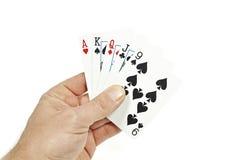 Pokerspelare som rymmer det höga kortet Arkivbild