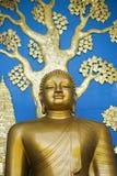 POKHARA, NEPAL, EL 20 DE MAYO: Oro Buda de la pagoda de la paz de mundo Imagenes de archivo