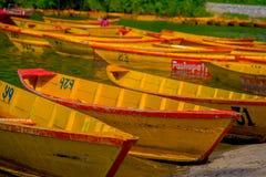 POKHARA NEPAL, LISTOPAD, - 04, 2017: Zamyka up drewniane żółte łodzie z rzędu przy Begnas jeziorem w Pokhara, Nepal Fotografia Royalty Free