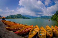 POKHARA NEPAL, LISTOPAD, - 04, 2017: Zamyka up drewniane żółte łodzie z rzędu przy Begnas jeziorem w Pokhara, Nepal, rybi oko Zdjęcia Stock