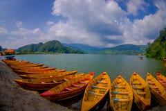 POKHARA NEPAL, LISTOPAD, - 04, 2017: Zamyka up drewniane żółte łodzie z rzędu przy Begnas jeziorem w Pokhara, Nepal, rybi oko Fotografia Royalty Free