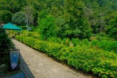 POKHARA, NEPAL 10 OKTOBER, 2017: De mooie tuin in gaat van knuppelhol binnen met een gestenigde weg in Pokhara, Nepal Royalty-vrije Stock Foto