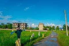 POKHARA, NEPAL AM 10. OKTOBER 2017: Steiniger alter Weg nah an einem Reisfeld in Sauraha, Nepal Stockfotografie