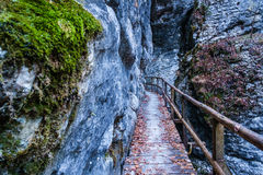 Pokljuka gorge near Bled. Galleries that leads in the most narrow part of gorge Stock Photos