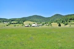 Pokljuka Plateau,Triglav National Park,Slovenia Royalty Free Stock Photo