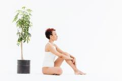 Pokojowa amerykanin afrykańskiego pochodzenia kobieta siedzi blisko małego drzewa w garnku zdjęcie royalty free