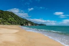 Pokojowa piasek plaża, ocean z falami i Tasman zatoka, Nelson teren, Nowa Zelandia zdjęcie royalty free