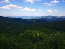 Pokojowe zielone góry zakrywać trawa pod jasnym niebieskim niebem Fotografia Royalty Free