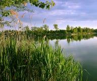 Pokojowo jezioro Obraz Royalty Free