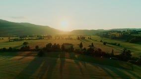Pokojowy epicki rolnictwo krajobrazu trutnia strzał zdjęcie wideo