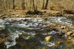 Pokojowy Halny Pstrągowy strumień w Blue Ridge Mountains obrazy royalty free