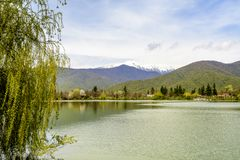 Pokojowy Jeziorny Vista fotografia royalty free