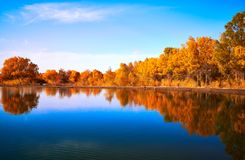 Pokojowy jezioro pod zmierzchem obraz stock