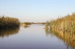 Pokojowy jezioro w holandiach Obrazy Royalty Free