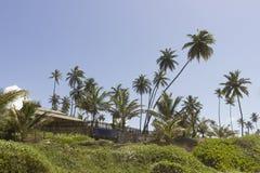 Pokojowy miejsce żyć w Brazylijskim północnym wschodzie obraz royalty free