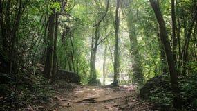 Pokojowy moment samotność przy Erawan parkiem narodowym w Kanchanaburi prowinci, Tajlandia zdjęcie stock