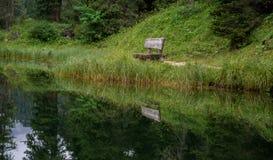 Pokojowy odbicie ławka w lesie zdjęcie stock
