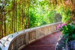 Pokojowy ogród obrazy stock