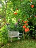 Pokojowy opróżnia ławkę pod granatowów drzewami Zdjęcia Stock