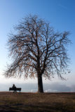 Pokojowy osamotniony Fotografia Royalty Free