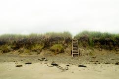 Pokojowy plaża krajobraz Zdjęcia Royalty Free