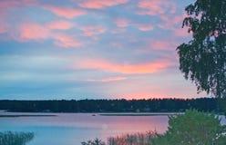 Pokojowy różowy zmierzch jeziorem z brzozy drzewem fotografia royalty free