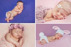 Pokojowy sen nowonarodzony dziecko, kolaż cztery obrazka obraz stock