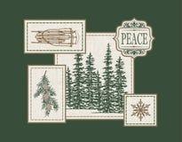 Pokojowy stróżówka patchwork Zdjęcie Stock