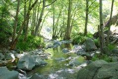 pokojowy strumień obrazy stock