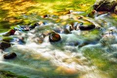 Pokojowy strumień w zieleni i kolorze żółtym zdjęcie royalty free