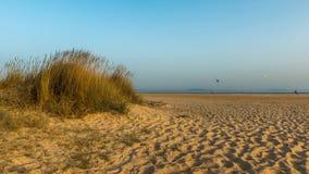 Pokojowy wieczór w Plażowych piasek diunach zdjęcie stock
