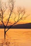 Pokojowy zmierzchu czas, piękny zmierzchu niebo, zmierzch odbija w jeziorze czochry fala, delikatnie Halni tła fantastyczny obraz royalty free