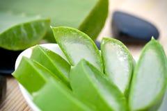 Pokrojona Aloesu Vera roślina Fotografia Stock