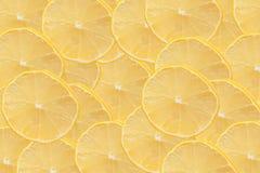 Pokrojona cytryna jako tło Fotografia Stock