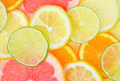 Pokrojone cytrus owoc Obrazy Royalty Free