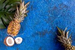 Pokrojone egzotyczne owoc na błękitnej tło odgórnego widoku przestrzeni dla teksta Zdjęcia Stock