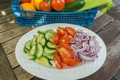 Pokrojone marchewki seler i pieprze na talerzu Fotografia Royalty Free