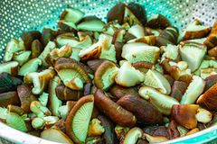 Pokrojone shiitake pieczarki w żelaznym koszu zdjęcie stock