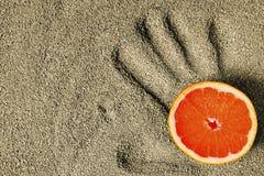 Pokrojony grapefruitowy na piaskowatym palmowym druku Obraz Royalty Free