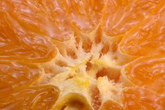 Pokrojony mandarynka cytrusa tło obrazy royalty free