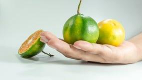 Pokrojony sześcian świeży tangerine i jeden tangerine na ręce Obraz Royalty Free