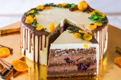 Pokrojony wyśmienicie czekoladowy tort Obrazy Stock