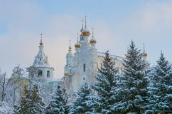 Pokrovsky domkyrka i Kharkiv ukraine Arkivbilder