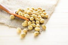 Pokryty arachid gałęzatki smak Obraz Stock