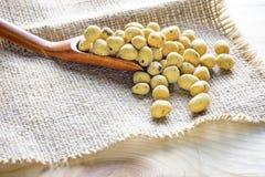 Pokryty arachid gałęzatki smak Zdjęcia Royalty Free