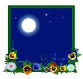 pokrywa kwiaty ilustracyjną noc Fotografia Royalty Free