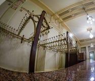 Pokrywa stojaka w Metropol hotelu w Moskwa, Rosja Zdjęcia Royalty Free