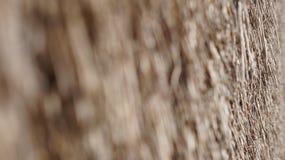 Pokrywająca strzechą Dachowa Ciasna ostrość Zdjęcie Stock