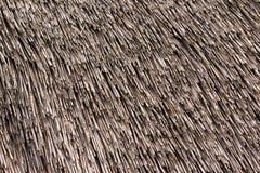Pokrywająca strzechą dachowa tekstura. Fotografia Royalty Free