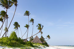 Pokrywający strzechą bungalowy na białej piaskowatej plaży otaczającej drzewko palmowe oceanem Zdjęcie Royalty Free